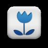 flowers img